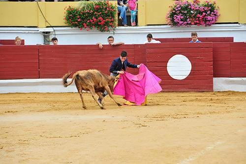 Capea - spectacles taurins - Hagetmau - Feria du Novillo - Fêtes d'Hagetmau
